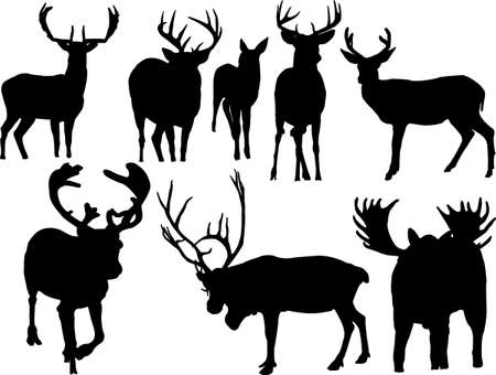 deers collection silhouettes Vector