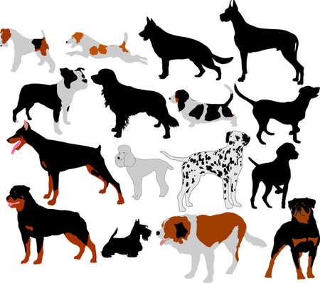 dalmata: sagome di cani insieme vettoriale