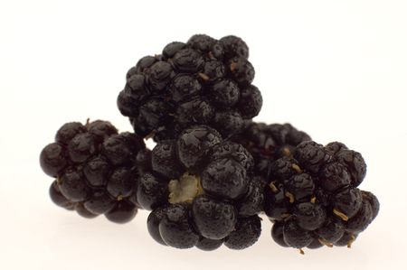 singly: black berry close-up Stock Photo