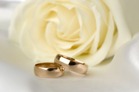 wedding rings in front of white rose close up photo