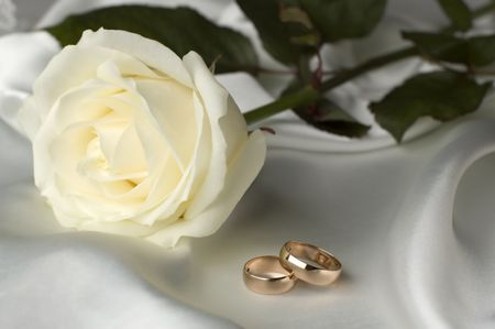 wedding rings in front of white rose close up