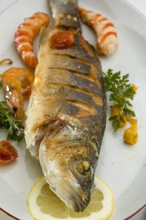 sea bass baked on a plate close up shoot Stock Photo - 843733