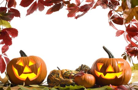 halloween pumpkins on white background with fall leaves frame photo
