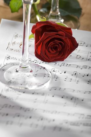 sheetmusic: red rose on a sheet of notes close up shoot Stock Photo