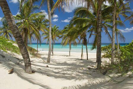 beautiful scene on the beach in Guanabo - Cuba Stock Photo - 2778714