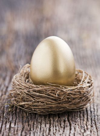 nest egg: Golden egg in nest close up shoot