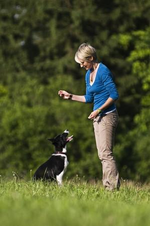 woman dog: Mujer joven jugando con border collie dog al aire libre  Foto de archivo