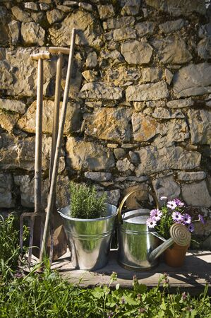 gardening tools: Gardening tools and flowers outdoor close up shoot Stock Photo