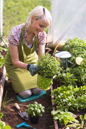 gardening gloves: Young woman gardening in glasshouse close up