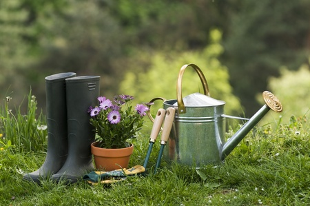 Gardening tools and flower on the grass close up Stock Photo - 9418712