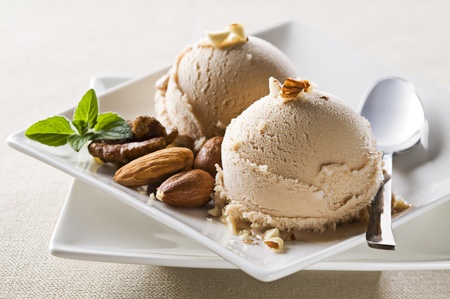 Fresh hazelnut ice cream on plate close up Stock Photo - 9663006