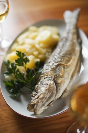 Roasted trout with potatoes and parsley close up photo
