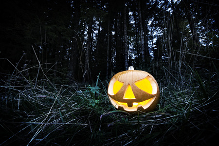 scary night: Scary halloween pumpkin in the dark forest at night