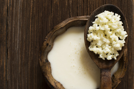 kitchen: Milk kefir grains on a wooden spoon overhead shoot