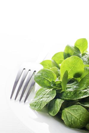 valerian plant: Valerianella lettuce isolated on white plate close up