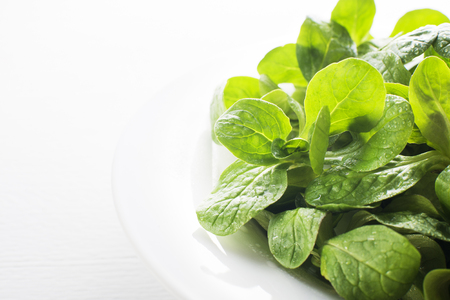 valerian: Valerianella lettuce on white plate close up