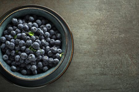 Eating Blueberry. Fresh raw berries. Agriculture, Gardening, Harvest Concept