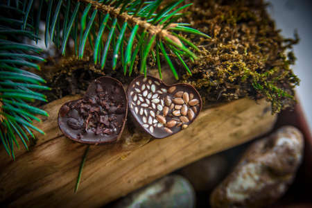 beautiful handmade chocolate candy. Needles, wood and moss in the background