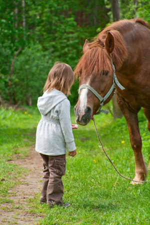 Total trust. Big chestnut horse pulls its neck to little beautiful girl. Stock Photo
