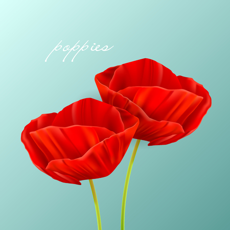 Vector illustration of a spring background with poppies Illustration