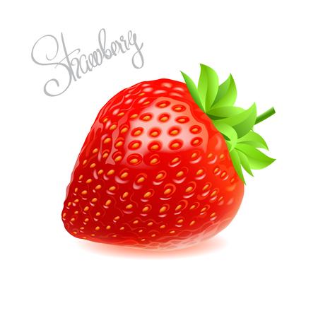 Vectorillustratie van rode verse smakelijke aardbei