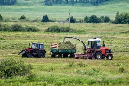 Combine harvester and tractor remove grass from the field