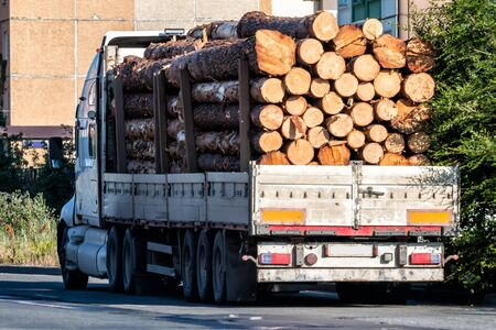 Big heavy timber lorry on a town street. Trees loaded semi-trailer truck 版權商用圖片 - 150285157