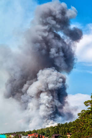 Large forest fire near the village