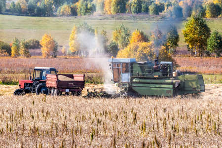 Combine harvester and agricultural tractor croping grain from the field