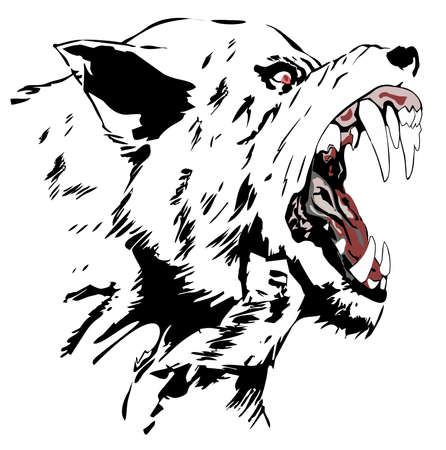 snarling: Wolf  Black wolf  Cartoon Angry Wolf Head   Illustration