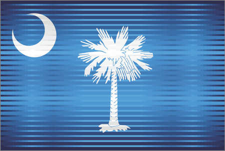 Shiny Grunge flag of the South Carolina - Illustration,  Three dimensional flag of South Carolina