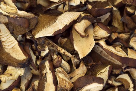 dehydrate: Dehydrated slices of mushrooms - Macro Stock Photo