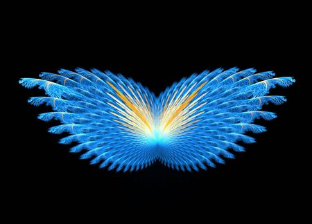 Fractal abstract - Butterfly