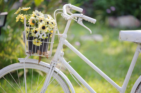 cast iron red: flower in the bicycle