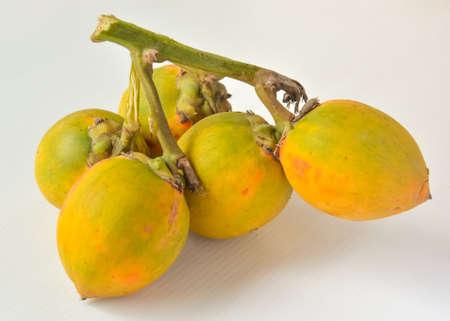 areca: Raw betel nuts or areca nut