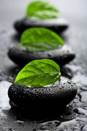 Zen stenen en bladeren met water druppels