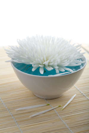 white flower floating in bowl. spa background Stock Photo - 4692609