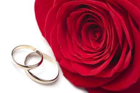 Gouden trouw ringen en red rose geïsoleerd