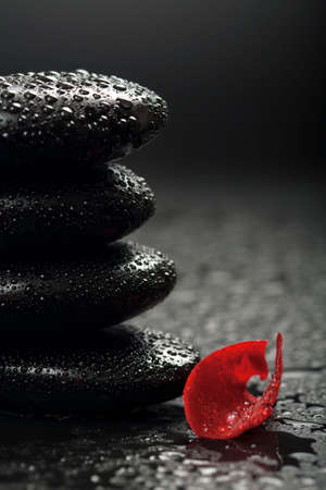 zen stones and rose petals over black background photo