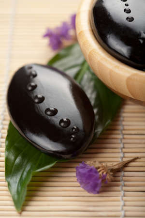 zen stone with water drops over green leaf photo