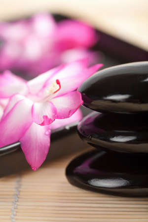 wellness environment: spa stones and pink flower Stock Photo
