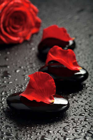 spa stones and rose petals over black background photo