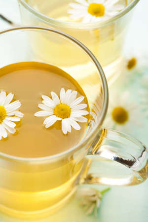 cup of herbal tea with camomile flowers  photo