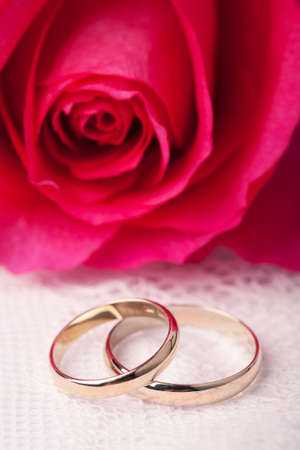 Gold wedding rings and pink rose  photo