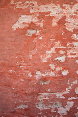 detritus: wall texture