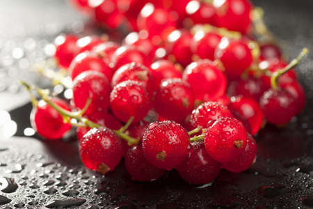 redcurrant: redcurrant with water drops over black