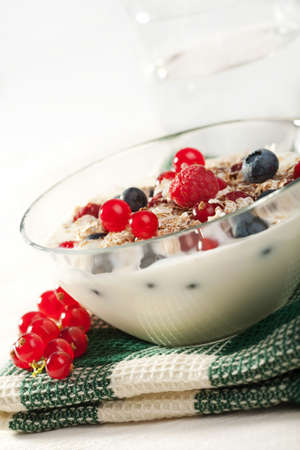 yogurt with cereal and wild berries  photo