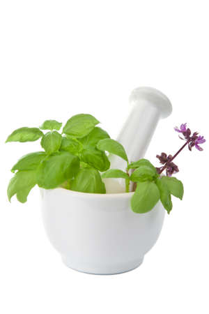 mortar with herbs isolated photo