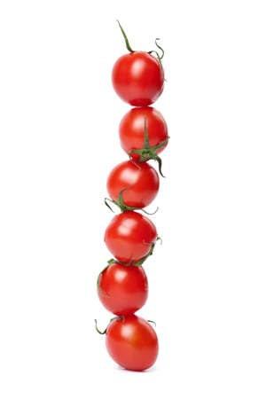 line of tomatoes isolated  photo