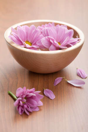 pink flowers in bowl photo